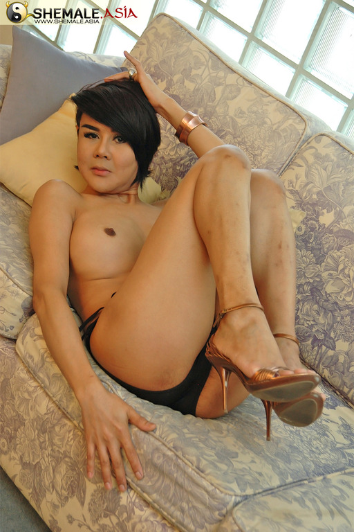 milf Asian shemale vibrator
