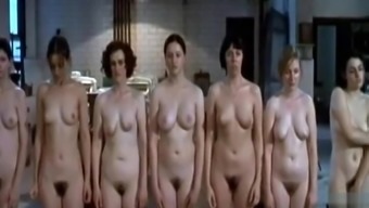 Adult Images Oiled swingers bukkake first time